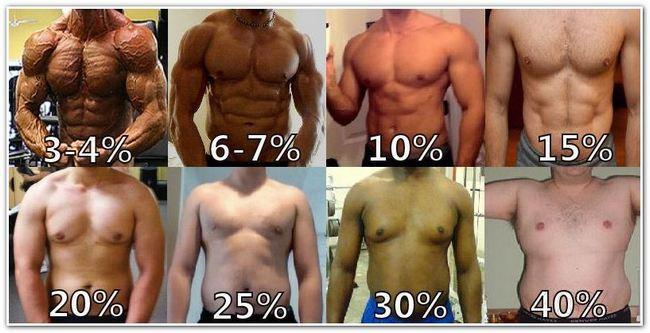 räkna ut fettprocent