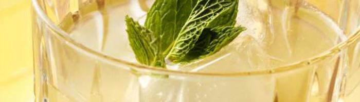 Освежающий лимонад без сахара. Рецепт на Красота и Баланс