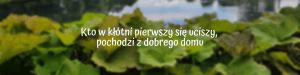 Kto w kłótni pierwszy się uciszy, pochodzi z dobrego domu – czeskie przysłowie