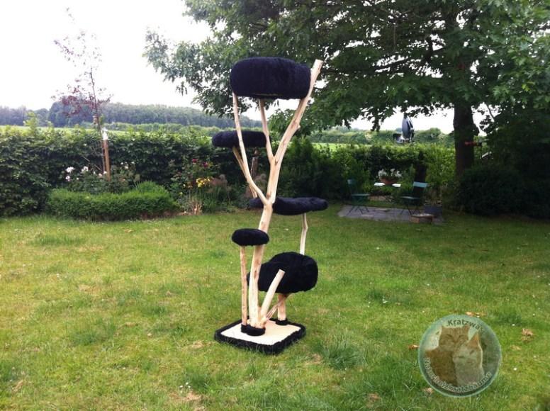 der schwarze jessie baum kratzwas naturholzkratzb ume. Black Bedroom Furniture Sets. Home Design Ideas