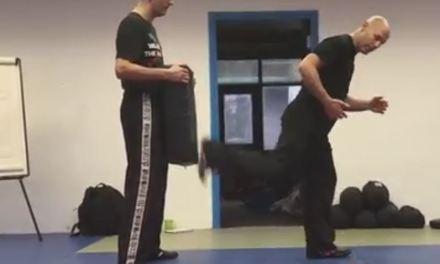How to perform a regular back kick or uppercut kick