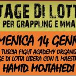 Stage Lotta libera Maestro Hamid Mojtahedi