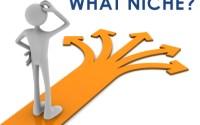 Blogging Niche