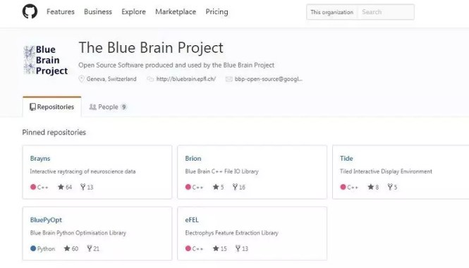 The blue brain project on github