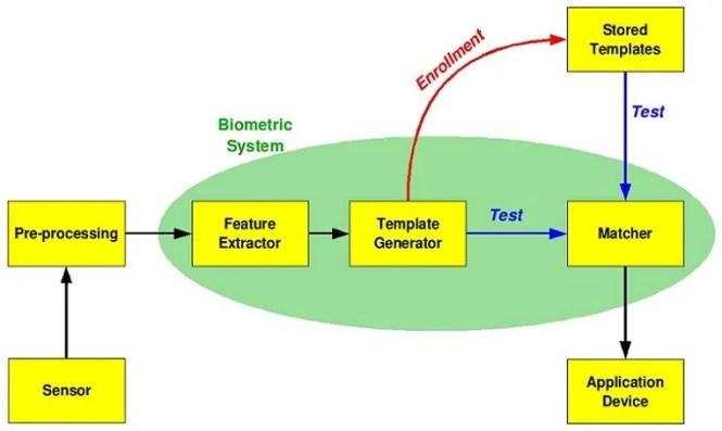 Biometric Authentication process