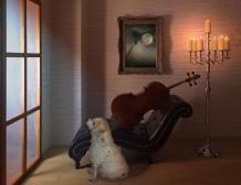 Das schlafende Cello und der mondsüchtige Hund