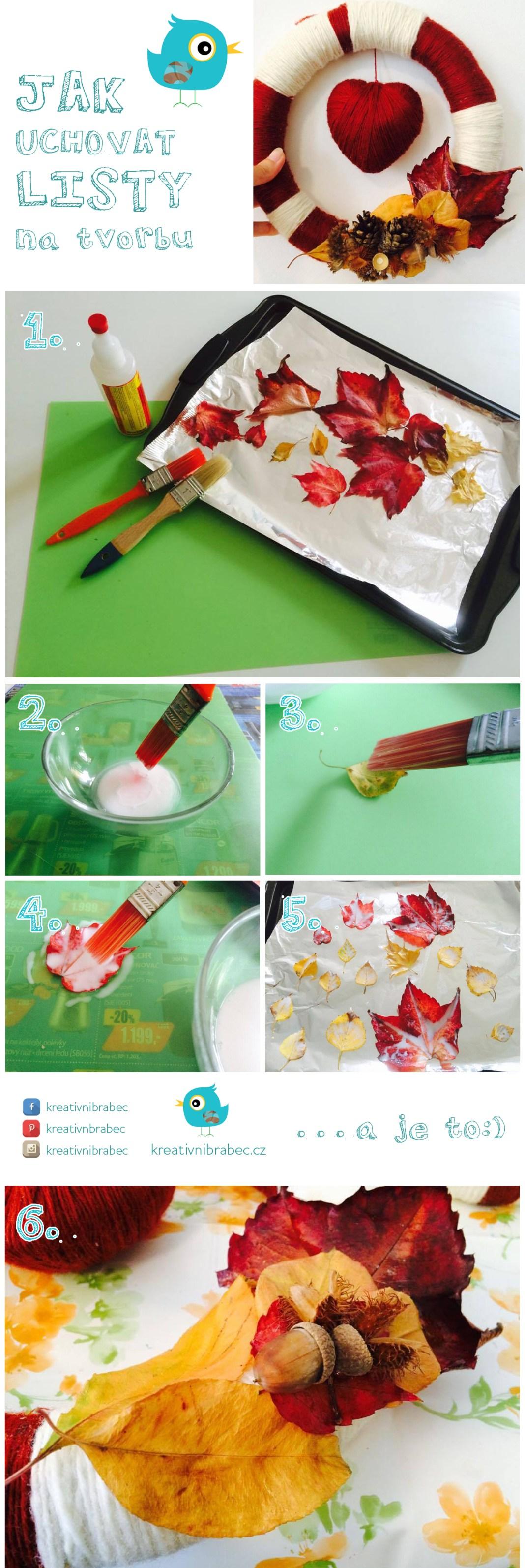 Návod, jak uchovat listy na tvorbu