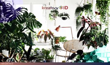 Membuat Hutan Dalam Ruangan dengan Dekorasi Rumah Urban Jungle