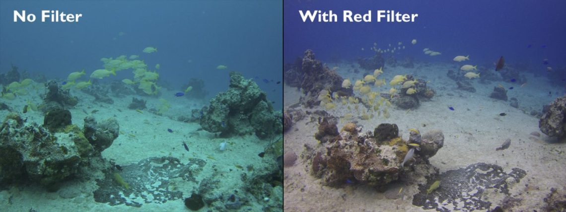 filter underwater photography