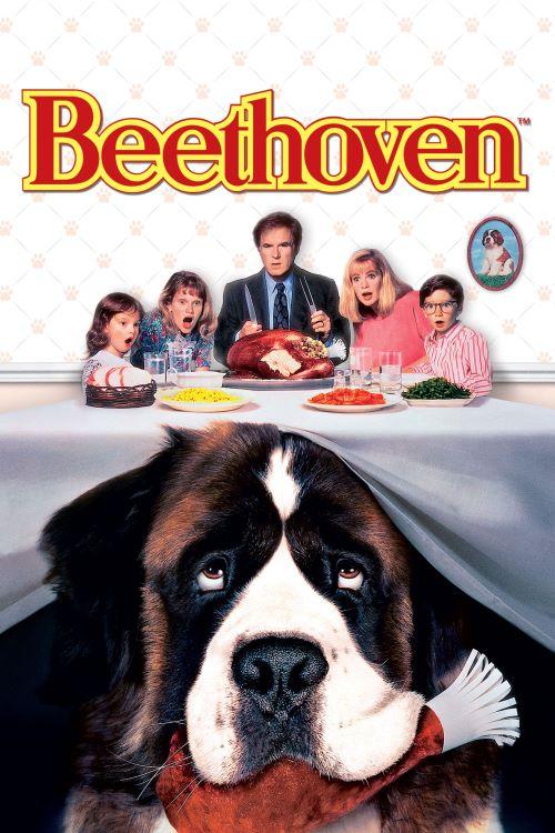 Beethoven film tentang anjing