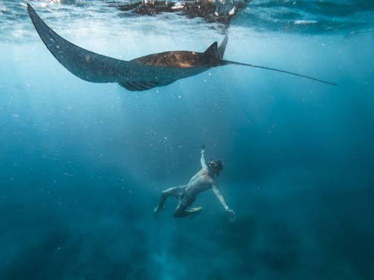 virtual tour di youtube di Bawah Laut