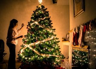menghias pohon natal