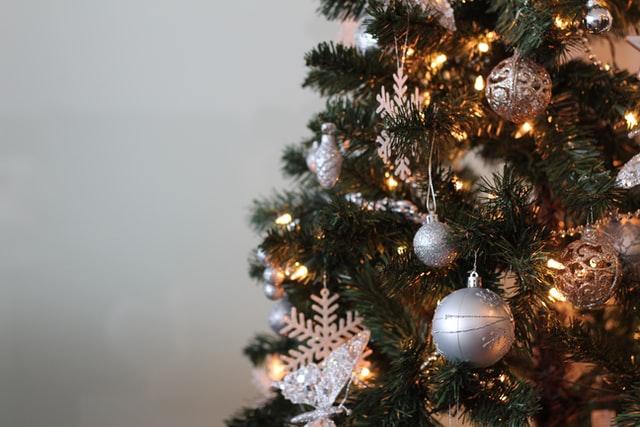 pohon natal 1