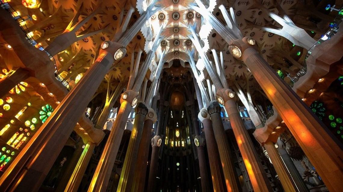 seni-biomorphism-untuk-interior