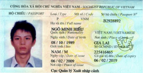 Vietnamese national Hieu Minh Ngo was sentenced to 13 years in prison for running an identity theft service.
