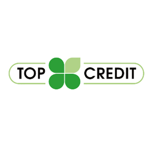 Заявка на кредит в TopCredit