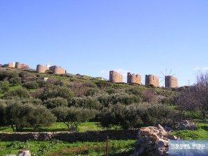 Steinwindmühlen
