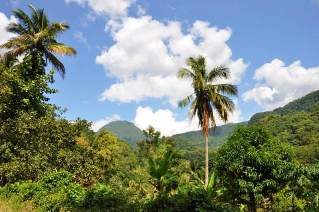 Dominica_2