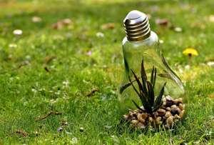 environmental-protection-3342204_960_720