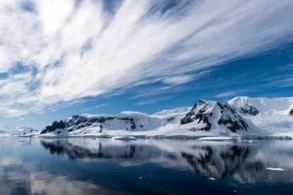 bbc-earth_antarctica_byrenatogranieri_rex_2302