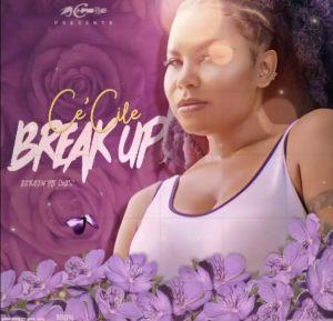 CeCile Breakup