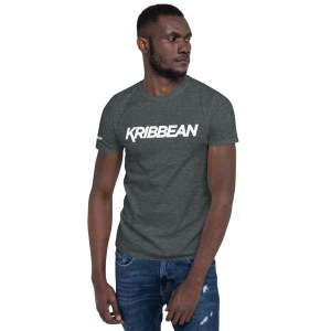 unisex basic softstyle t shirt dark heather front 605f358ec927e
