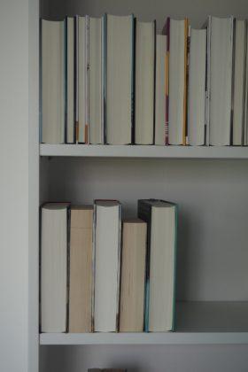 Lese-Tagebuch