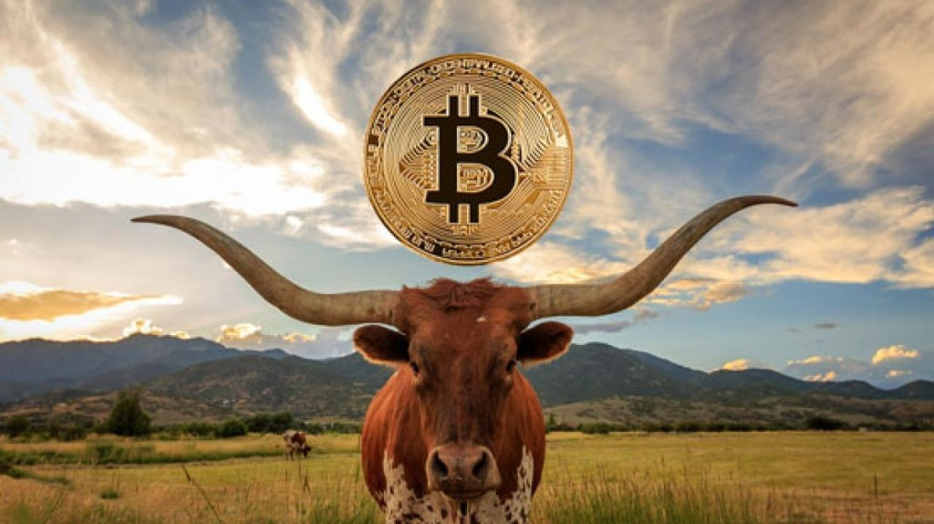 Famous Bitcoin Model Inventor Confirms: We Are Officially In A Bull Market!