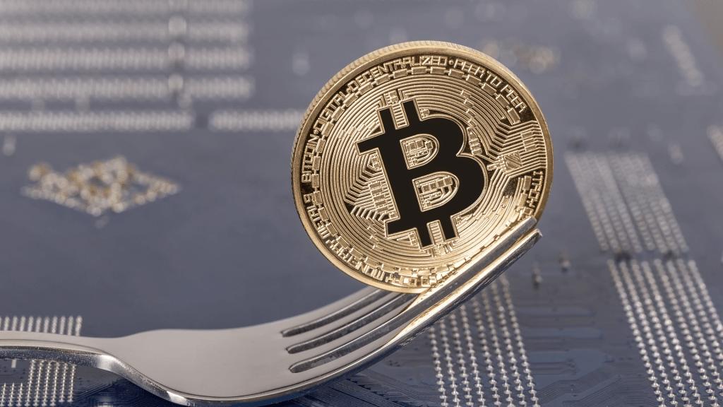 Bitcoin Fork'larından Şaşırtıcı Ralli!