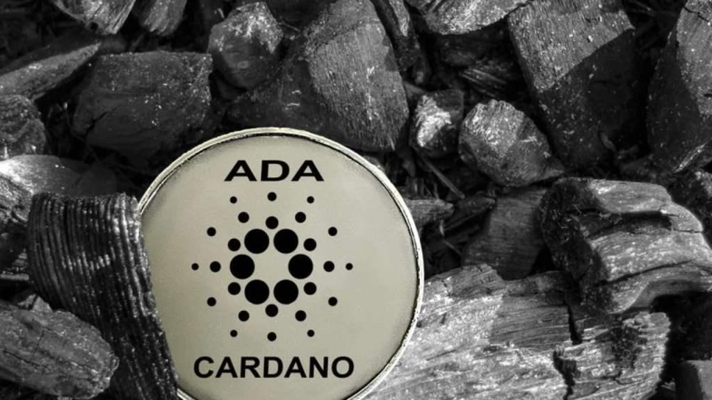 Cardano Yatırımcılarını Sevindiren Gelişme! İşte Yeni Entegrasyonlar…