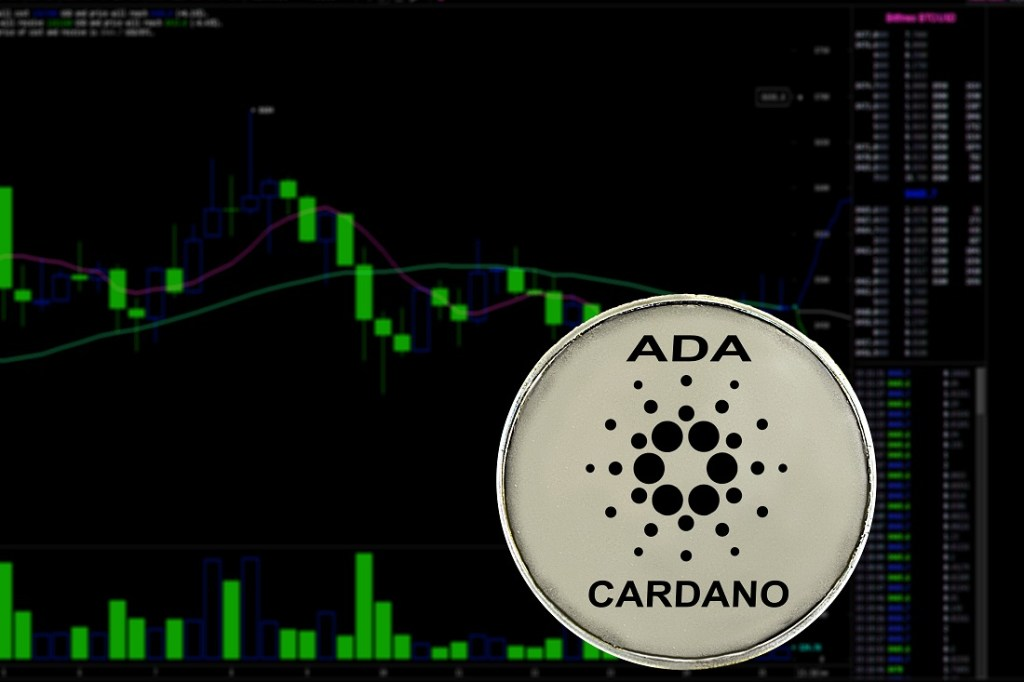 Cardano Kurucusundan Önemli Haber: Mayıs, ADA İçin Büyük Bir Ay!