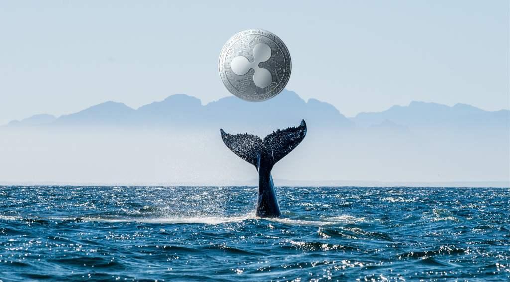 Ripple Balinaları, Binance'e Onmilyonlarca XRP Boşalttı!