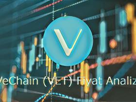 VeChain (VET) Fiyat Analizi: 16 Mayıs 2021
