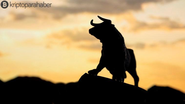 Boğa piyasası geri dönüyor mu?