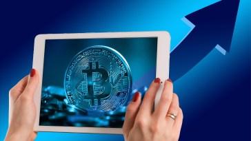 Tüm Bitcoin'ler 2020'ye kadar çıkarılacak ve gördüğümüz bu ayı piyasası sonuncu piyasa!