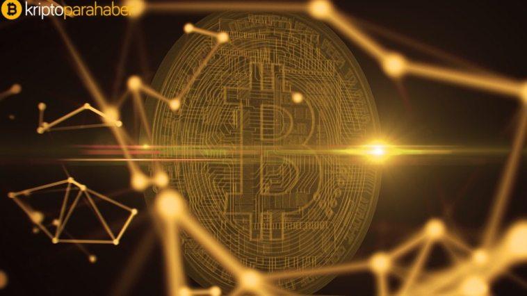 Ünlü analiste göre, Bitcoin bu seviyeye kadar düşebilir!