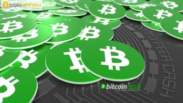 bitcoin cash 25 Ekim