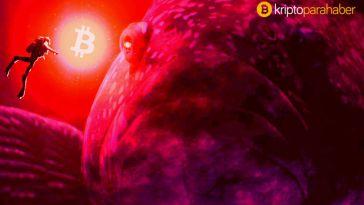 Forbes gizemli Bitcoin çöküşünün sebebini buldu: Balinalar oyun peşinde
