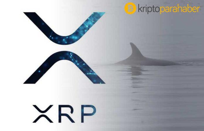 40 milyon Ripple taşındı! XRP fiyatı nasıl etkilenecek?