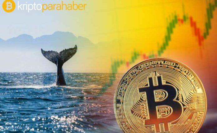 Balina satış uyarısı: Bitcoin, XRP ve Ethereum'da 700 milyon dolarlık işlemler