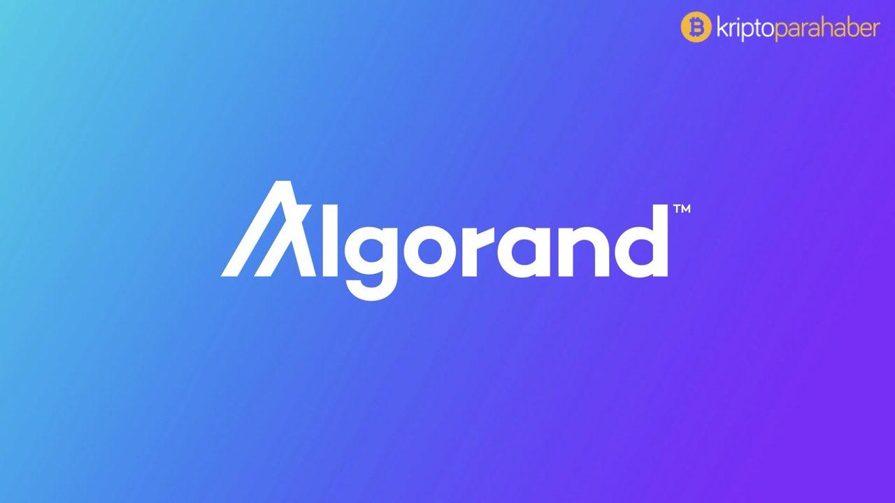 Algorand, Blockchain uygulamalarına özel bir programlama dili tasarladı.