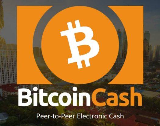 Всего один сервер контролирует 98% нод Bitcoin Cash