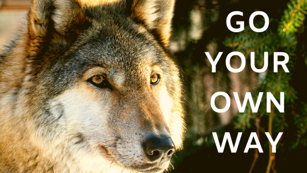 The Lone Wolf Mindset