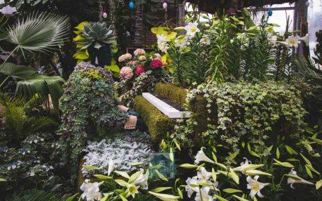Allen Gardens Watermarked-7