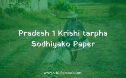 Pradesh 1 Krishi tarpha Sodhiyako Paper 2021