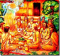 Sages in the forest