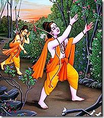 Rama and Lakshmana searching for Sita