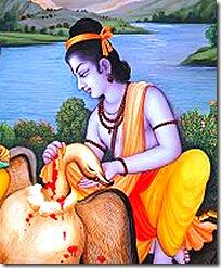 Lord Rama with Jatayu