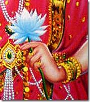 Sita Devi holding lotus flower