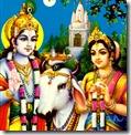 Radha and Krishna with cows